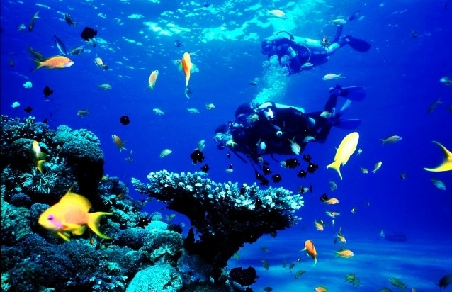 bawah laut pulau karimunjawa