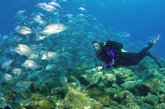 diving tulamben