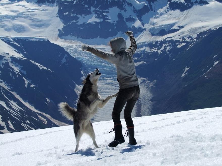 siberian husky with you