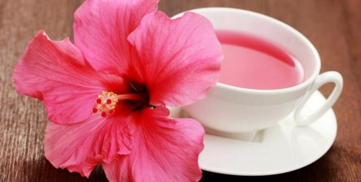 Manfaat teh bunga sepatu
