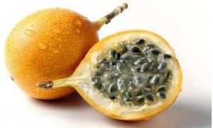markisa manis(passiflora edulis)