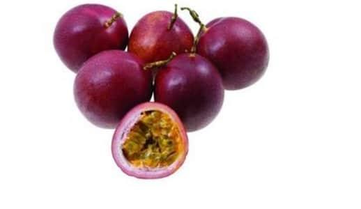 markisa ungu (purple passion fruit)