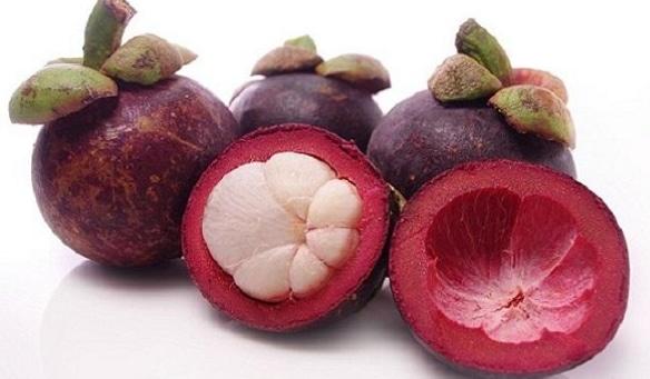 buah-manggis