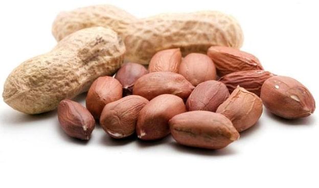 kacang-tanah